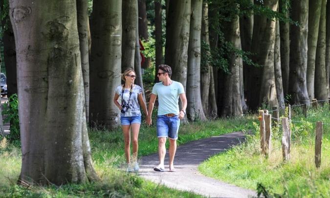 Studio De Bilt: wandelen in het Utrechts Landschap